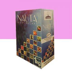 نایوتا Nauta