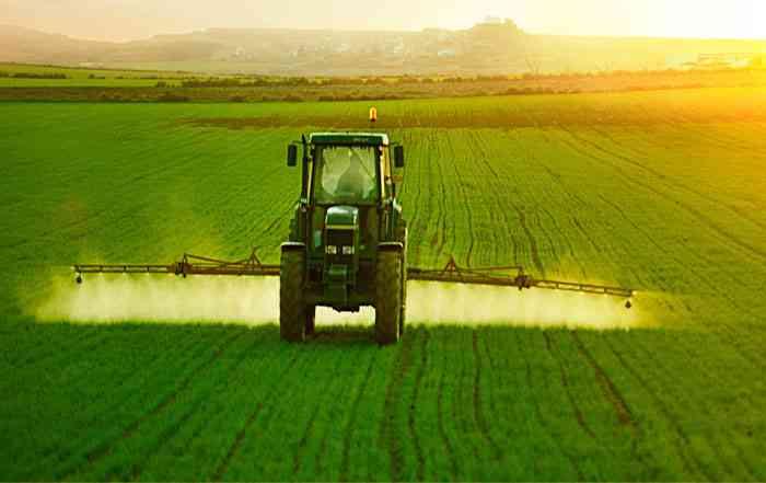 فواید ، تاثیر و نقش اسید آمینه در گیاهان