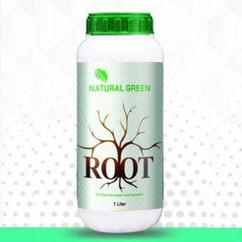 ROOT - روت