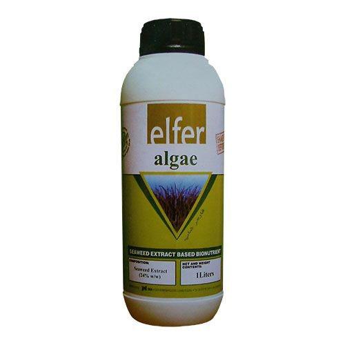 کود جلبک دریایی Elfer algae