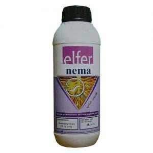 Elfer nema ( الفر نما )
