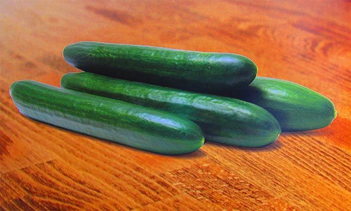 خرید بذر خیار سوپر گرین آتلانتیس هلند