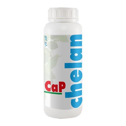 کود کلان کپ ( Chelan cap )