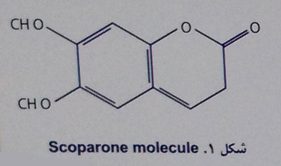 scoparone-molecule